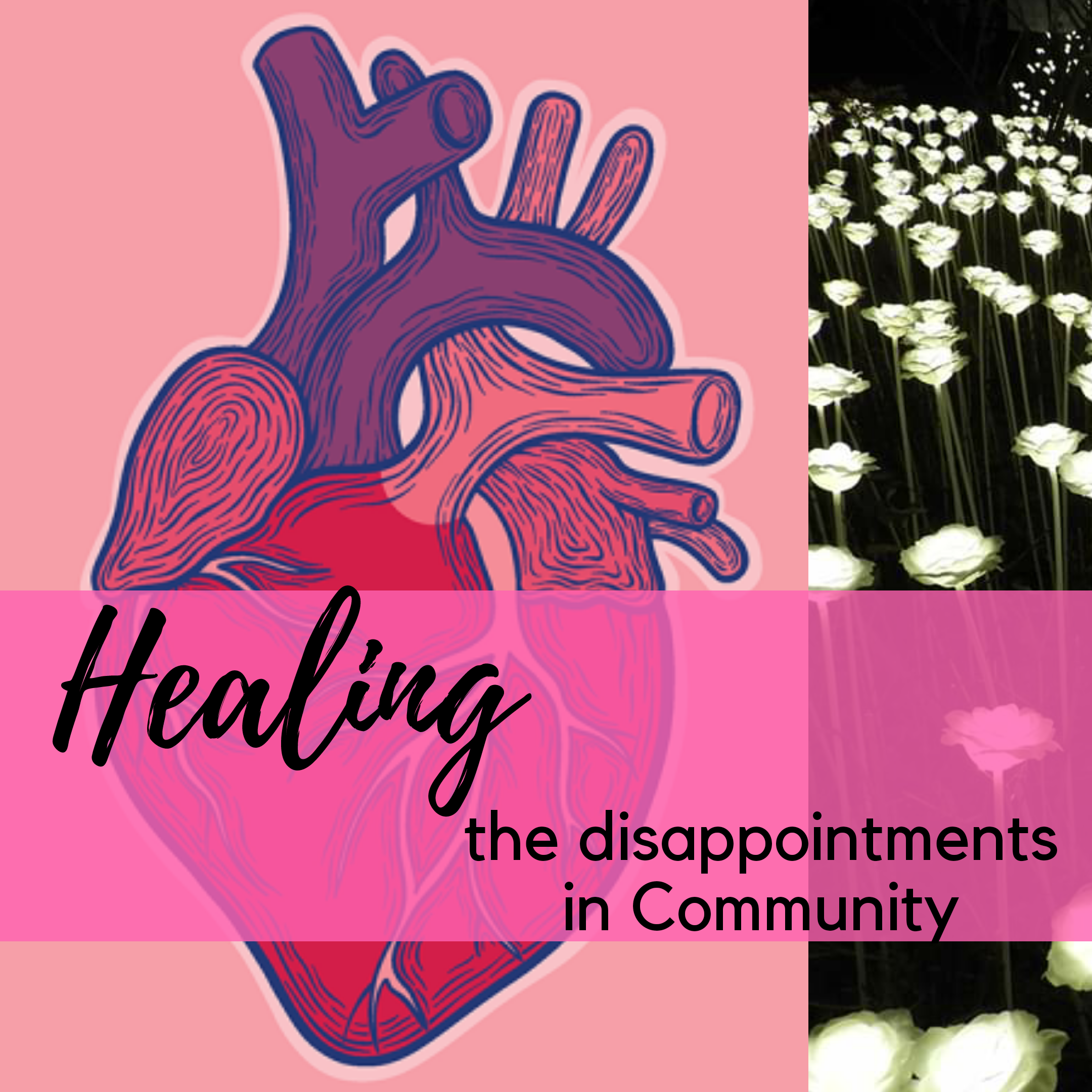 Healing the Disappointments in Community